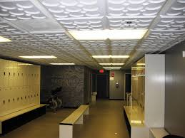 Usg Ceiling Tiles 2310 by Ceilume Featherlight Tiles Intersource Specialties Co