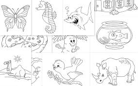 IPhone Prev Next Do You Like Coloring Book