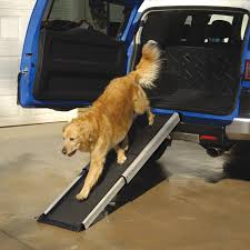 100 Dog Truck Ramp New For Bravasdogs Home Blog The Best