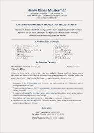 E Page Resume Examples Example Of For Fresh Graduate Information Technology