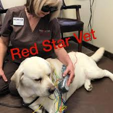 Red Star Veterinary Clinic - 5,056 Photos - 174 Reviews ... 58 Off Valley Vet Coupon Promo Codes Retailmenotcom Oukasinfo Pet Supply Store Sckton Manteca Ca Carters Mart Welcome To Benjipet Sugar House Veterinary Hospital Vetenarian In Salt Lake City Ut Animal Medical Center Of Corona Your Friendly Vet For Your Coupon September 2018 Deals Northstar Vets Home 40 Military Discounts 2019 On Retail Food Travel More Promo Code Free Shipping Edreams Multi City Memorial Day Where Vets And Military Eat Get Discounts Flea Tick Coupons Offers Bayer Petbasics