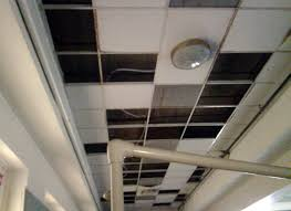 ceiling horrifying 2x4 drop ceiling tiles cheap famous