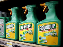 FILE PHOTO Monsantos Roundup Weedkiller Atomizers Are Displayed For Sale At A Garden Shop