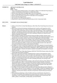 Download Aircraft Painter Resume Sample As Image File