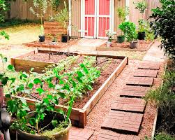 Starting A Spring Vegetable Garden Indoors 38 Homes That Turned Their Front Lawns Into Beautiful Perfect Drummondvilles Yard Vegetable Garden Youtube Involve Wooden Frames Gardening In A Small Backyard Bufco Organic Vegetable Gardening Services Toronto Who We Are S Front Yard Garden Trends 17 Best Images About Backyard Landscape Design Ideas On Pinterest Exprimartdesigncom How To Plant As Decision Of Great Moment Resolve40com 25 Gardens Ideas On