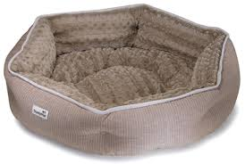 Trusty Pup Dog Bed by Worldwise Expands Smartykat Trustypup Lines