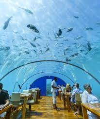 100 Conrad Maldives Underwater You Can Dine At The Ithaa Undersea Restaurant In The