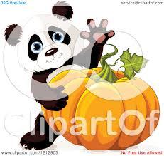 Panda Pumpkin Designs by Cartoon Of A Cute Panda Waving And Holding An Autumn Pumpkin