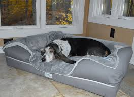 Snoozer Cozy Cave Pet Bed by 7 Of The Best Dog Beds For Large Dogs Barkpost