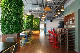 plantes pour bureau quelles plantes sans entretien choisir pour vos bureaux