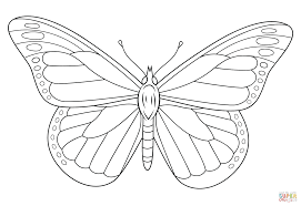 Download Coloring Pages Butterfly Monarch Page Free Printable