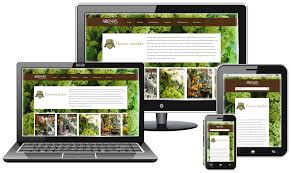 Responsive Mobile Web Design | Charlotte, NC Design Decisions Should You Put A Mobile Screenshot On Your Telecom Italia Group Obgyn Website Medical Site Solutions Tablet Web Template Html5 Css3 Templates Fastapps Creative Apps Psd By Blogfair Themeforest Interactive Marketing Enterprise Company Nj Ny 3 Facts About Ecommerce Responsive Design You Need To Know Graphic New Plymouth Taranaki Filament Page Contests Need For