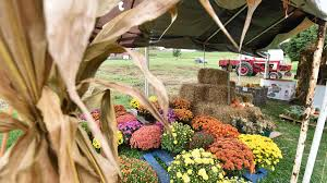 Grims Pumpkin Patch Pa by 21 Sites Participating In The 2016 Lehigh County Open Gate Farm