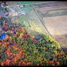 Grandville Mi Pumpkin Patches by 9 Awesome Corn Mazes In Michigan You Have To Do This Fall