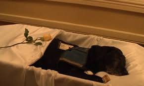 They made a funeral for Tara the dog in honor of her service it s