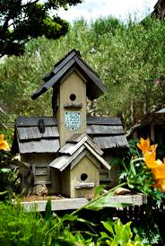 309 Best Beautiful Bird Houses Images On Pinterest | Bird Houses ... Backyard Birdhouse Youtube Free Images Insect Backyard Garden Inverbrate Woodland Amazoncom Boys Woodworking Bbw81 Cardinal Nest Box Bird House Decorative Little Wren Haing Yard Envy Table Lawn Home Green Lighting Wooden Modern Take On A Stuff We Love Pinterest Shop Glory 8125in W X 85in H 8in D White Discovery Channel Birdhouse Wooden Nesting Baby Birds In My Bird House How To Make Spring Diy Craft For Kids Couponscom