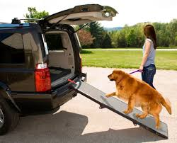 Pet Gear Tri-Folding Portable 70'' Pet Ramp - Walmart.com Amazoncom Pet Gear Travel Lite Bifold Full Ramp For Cats And Extrawide Folding Dog Ramps Discount Lucky 6 Telescoping The Best Steps And For Big Dogs Mybrownnewfiescom Stairs 116389 Foldable Car Truck Suv Writers Fun On The Gosolvit Side Door Tectake Large Big Dogs 165 X 43 Cm 80kg Mer Enn 25 Bra Ideer Om Ramp Truck P Pinterest Building Animal Transport Solution With 2018 Complete List Of 38 With Comparison