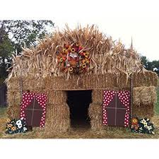 Southeast Wisconsin Pumpkin Patches by Best 25 Pumpkin Patch Corn Maze Ideas On Pinterest Pumpkin