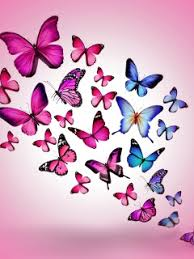 Download Wallpaper 240x320 Butterfly Drawing Flying Colorful