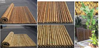 100 Bamboo Walls Ideas Fencing Canes Panels FenceSticks Rolls Great
