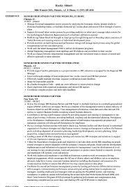Senior HR Business Partner Resume Samples Velvet Jobs And Hr ...