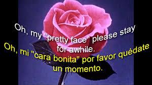 Siempre Te Voy A Querer Garden by Eddy Dillon Pretty Face Subtítulos En Español Lyrics Youtube
