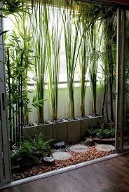 Des Bambous Pour Se Proteger Du Vis A Sur Le Balcon