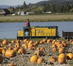 North Plains Pumpkin Patch by Where To Find A Pumpkin Patch In The Portland Area Oregonlive Com