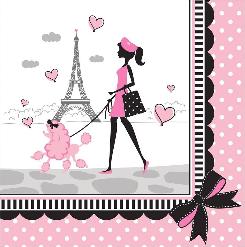 Creative Converting Party in Paris Lunch Napkins - Pink and Black, 18ct