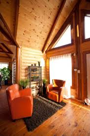 Brown Living Room Decorating Ideas by 59 Best Grand Living Room Ideas Images On Pinterest Living Room