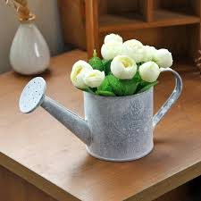 Rustic Metal Flower Pot Tin Water Kettle Shower Container Planter Watering Can Home Garden