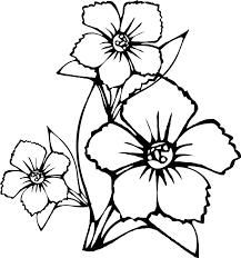 Coloring Page Flower Of A Pages Flowers For Kids To Print