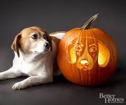 Simple Steps To Carving A Pumpkin by 70 Cool Easy Pumpkin Carving Ideas For Wonderful Halloween Day