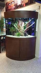 Extra Large Fish Tank Decorations by The Fish Gallery