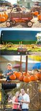 Pumpkin Patch Miami Lakes by 964 Best Images About Photography On Pinterest Maternity