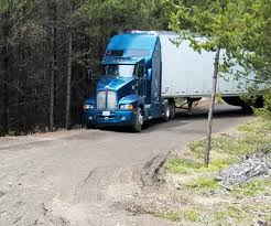 Trucker Gets Lost In The Woods With Truck Full Of Chips, Doesn't Eat ...