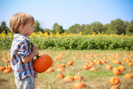 Best Pumpkin Patches In Cincinnati by 8 Great Fall Festivals This Weekend In Cincinnati U2013 Cincinnati
