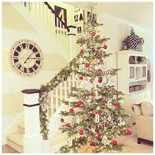 Best Smelling Christmas Tree Types by Best 25 Noble Fir Christmas Tree Ideas On Pinterest Christmas