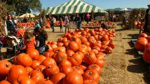 Sand Springs Pumpkin Patch by Carmichael U0027s Pumpkin Patch In Bixby A Fall Tradition For Green C