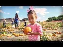 Miami Lakes Church Pumpkin Patch by Free Pumpkin Patch Festivals In Miami Lakes