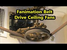 fanimation belt driven ceiling fans youtube
