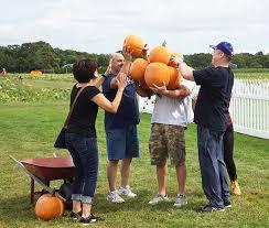 Pumpkin Picking Riverhead by Plan Your Trip Stakey U0027s Pumpkin Farm