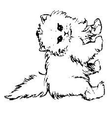 Kitten Coloring Pages 4