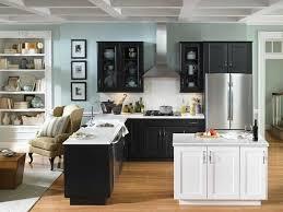 inspiring light blue kitchen walls with bookshelf and black