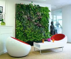 plante de bureau apportez des plantes au bureau pour être heureux au travail