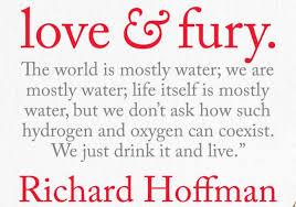 Love Fury By Richard Hoffman