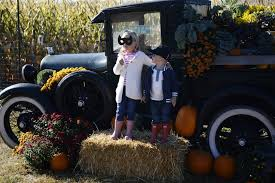 Pumpkin Patches In Colorado Springs 2014 by The Best Fall Festivals And Events In Denver And Colorado