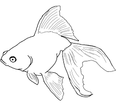 Fish Coloring Book Pages Free For Kids