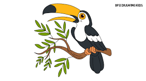 Toucan Flowers And Leaves Page Of Coloring Book For Adults And