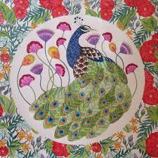 Millie Marottas Animal Kingdom Colouring Book For Adults Ladybridges